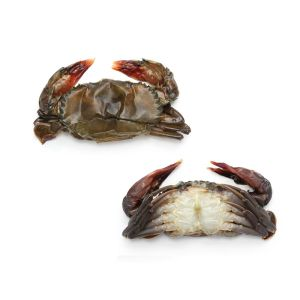 Soft shell crab sold in bag - 1kg (frozen)
