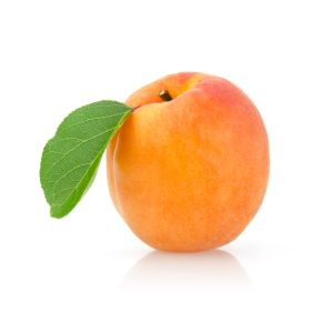 Exceptional quality Ladycot AAAA apricots - 1kg