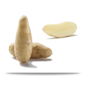 Ratte potatoes +20mm - 1kg ideal for steaming, pan-frying, gratin