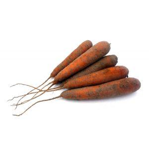 Sandy carrots - 1kg