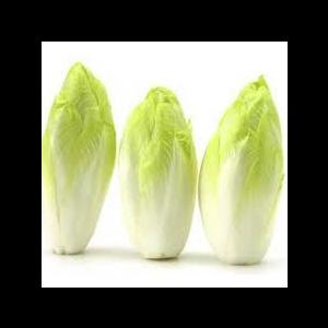 "Endive/Chicory ""pleine terre"" - 500g"