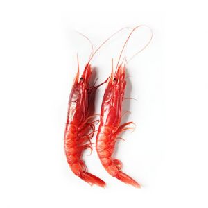 Gambero Rosso, the most reputed red Italian prawns - 2kg (frozen)