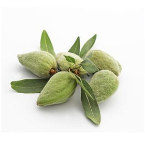 Fresh almonds - 500g