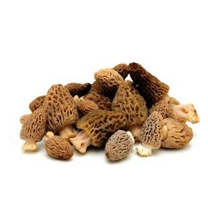 Frozen large morels / morilles  - 1kg - delicious with Bresse poultry