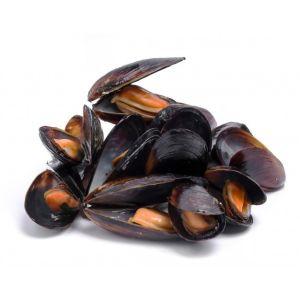 Live Mediterranean mussels - 2kg