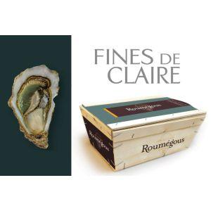 Roumegous Fine de Claire oysters N4 from Charente Maritime