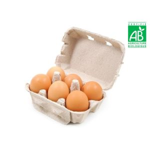 Certified organic free-range eggs from France x 6