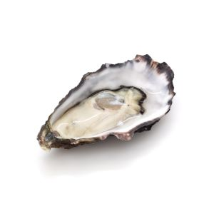 Kelly Gigas oysters n2 from Galway Bay -  12pcs - 7 DAYS LEAD TIME