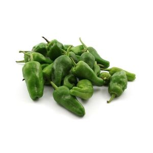 Pimento padron fresh / Chilli peppers from Padron - 1kg