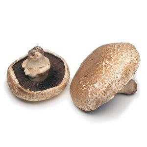 Fresh portobello mushrooms - 500g