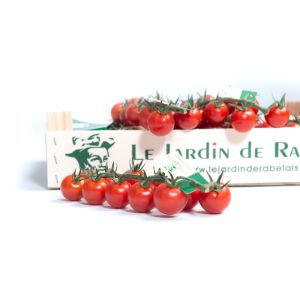 Exceptional cherry tomatoes from Le Jardin de Rabelais - 1kg - the most delicious and unique sweet taste cherry tomatoe available