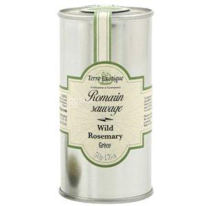 Wild rosemary / Romarin sauvage - 50g