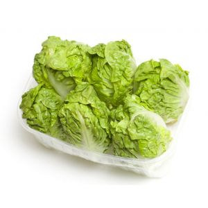 Sucrine lettuce - pack of 6pc
