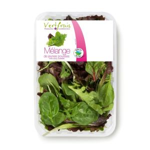 Mesclun / young shoot salad mix - 125g