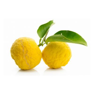 Premium Japanese untreated yuzu fruit - price for 200g - the essential citrus fruit of the Japanese cuisine, delicious with fish carpaccio