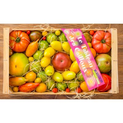 """Premium Heirloom tomatoes """"les cailloux"""" - 1kg - sustainable agriculture"""