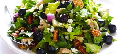 Summer turkey salad with a blueberry vinaigrette