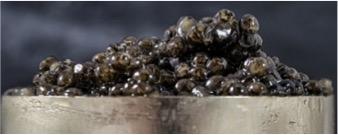 Appetizer caviar dip
