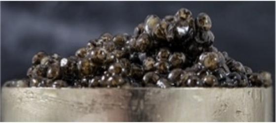 Caviar, a declaration of love