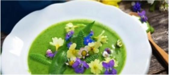 Edible flowers: color your dishes