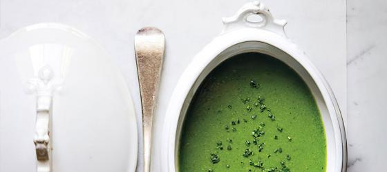 APPETIZER : Cream of green pea soup with fresh mint recipe