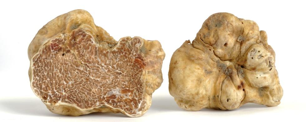 How to enjoy fresh truffles?