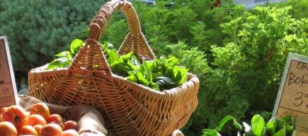 How to trust organic food in Dubai and Abu Dhabi ?